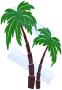 Palmbomen - 197x137 cm
